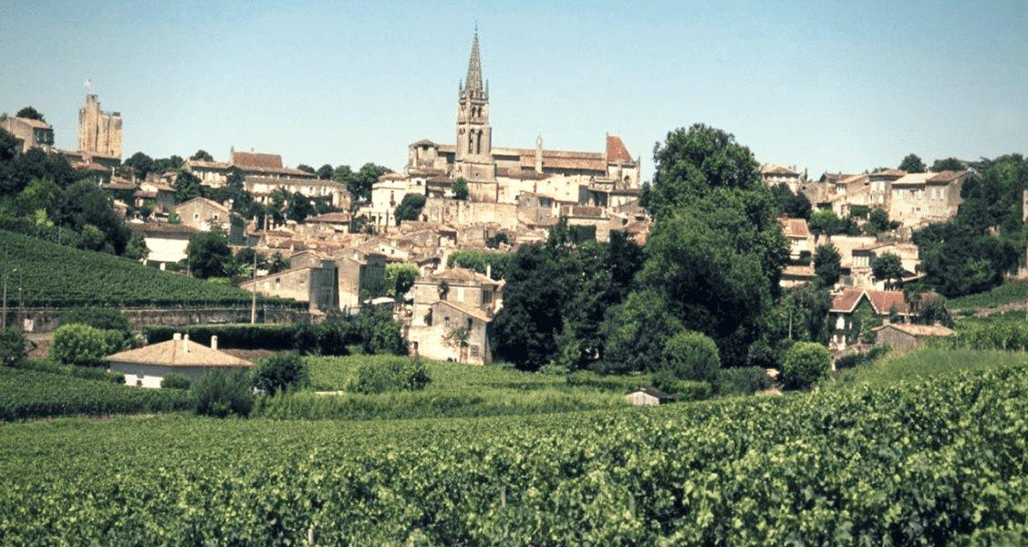 Dive into Bordeaux wine