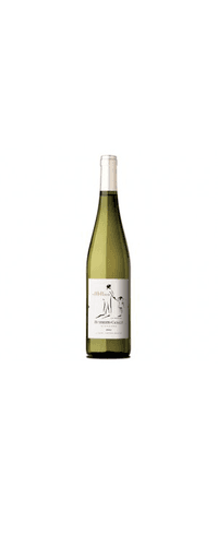 2015 Riesling, Humberto Canale 75cl